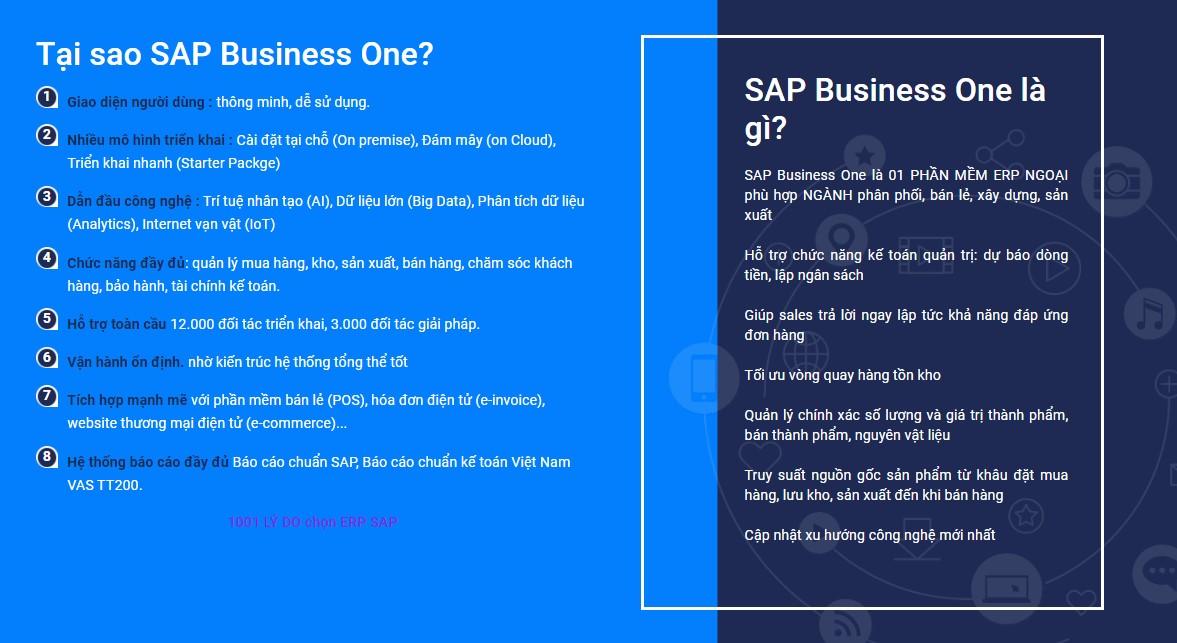 Tại sao SAP Business One