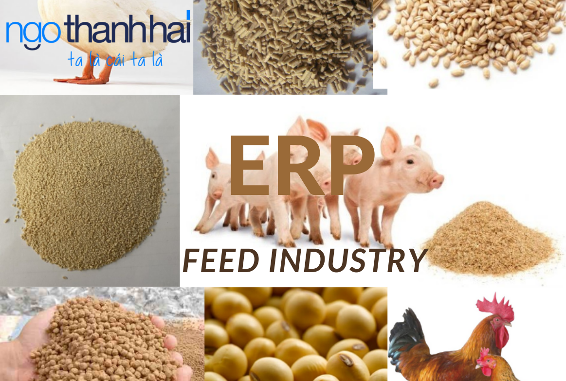 ERP Feed Industry